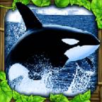虎鲸模拟器 破解版